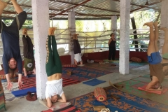 alpesh-yoga-school-india-1