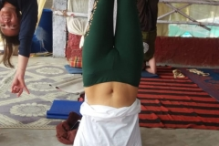 alpesh-yoga-teacher-training-rishikesh-india-1